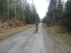 Z Suchedniowa ruszamy czarnym a później niebieskim szlakiem. Całkiem przyjemne szuterki przez las.