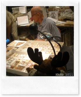 Natural History Museum - #6 - Fossil Lab