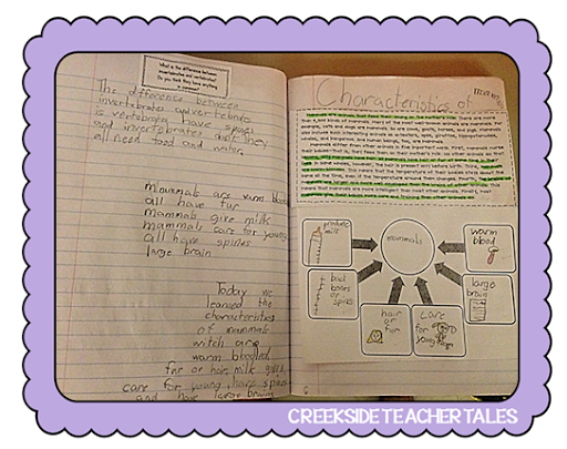 Types of Eaters Freebie (Interactive Science Notebook) - Creekside ...