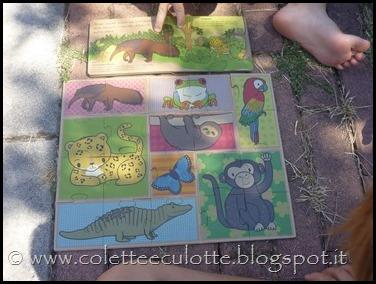 La foresta tropicale - I SASSI (14)
