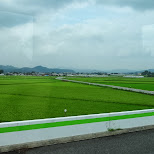 saitama countryside in Nikko, Totigi (Tochigi) , Japan