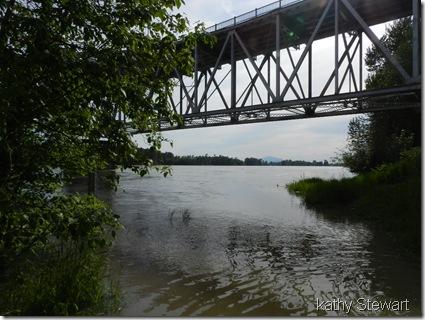 Fraser River under bridge