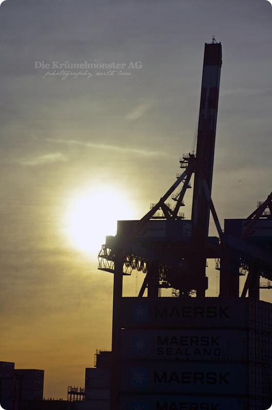 Bremerhavenrundfahrt 261113 (12)