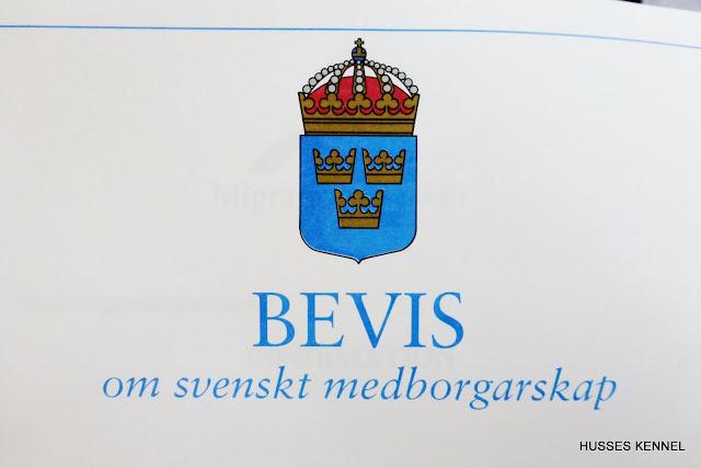 SVENSK MEDBORGARE