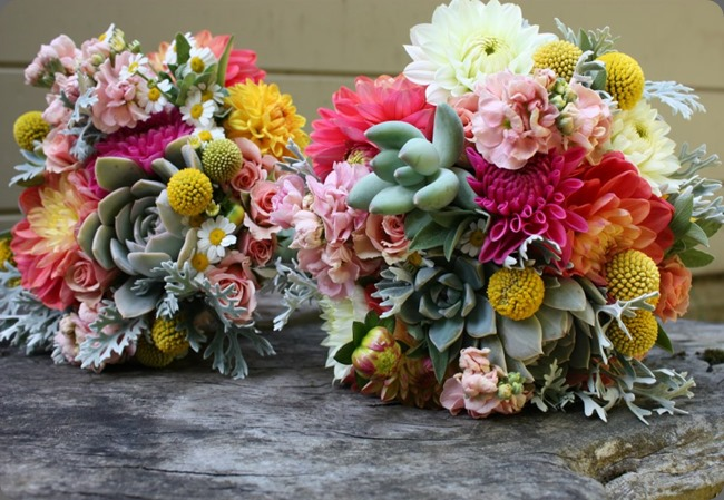 534462_10151215818280152_803813462_n flora organica designs