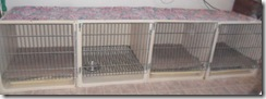 4-kennel-cages