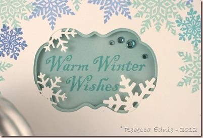 case study warm winter wishes2
