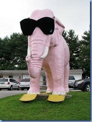 9968 Tennessee, Cookeville - Pink Elephant with giant sunglasses