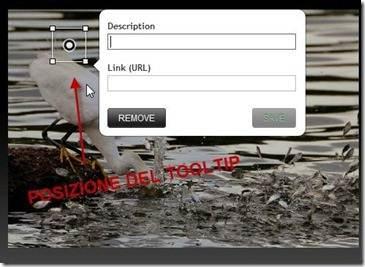 posizione-editor-tooltip