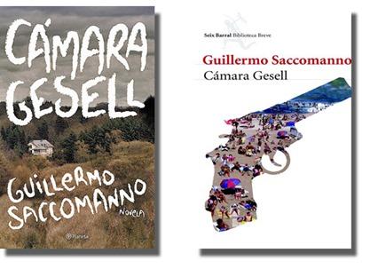 camara-gesell2