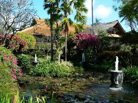 Hotel Hyatt Sanur: garden lake