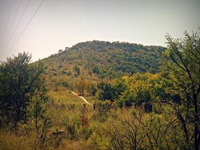 Pretoria-20120421-00334