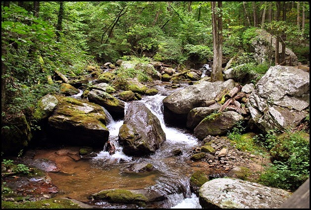 25b - Anna Ruby Falls Trail - View from Bridge crossing Smith Creek