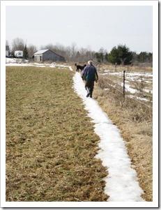 20120312_snow-path_001