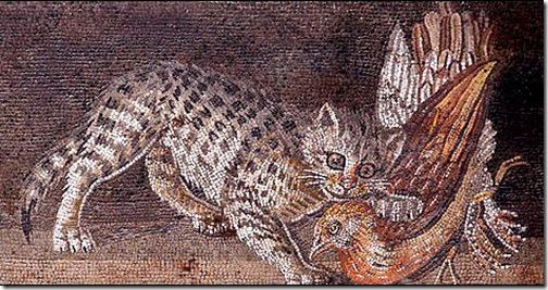 Gatto e gallina in mosaico romano