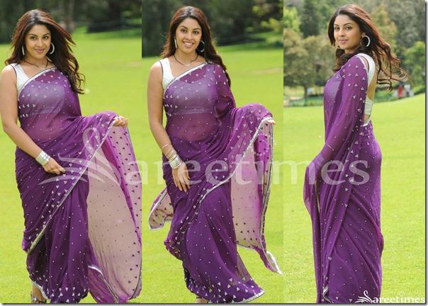 Richa_Gangopadhyay_Embroidery_Saree