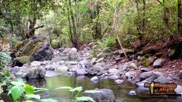 Ecoturismo Oaxaca Capulalpam  Pueblo Magico 6