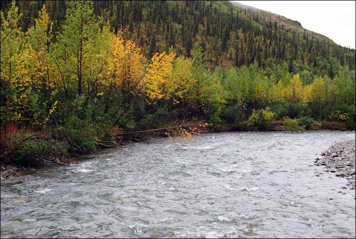 2013_08_Alaska 1070