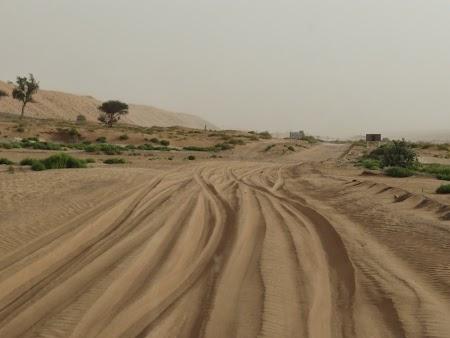 09. Sosea prin desert.JPG