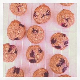 Blueberry Oatmal Breakfast Muffins