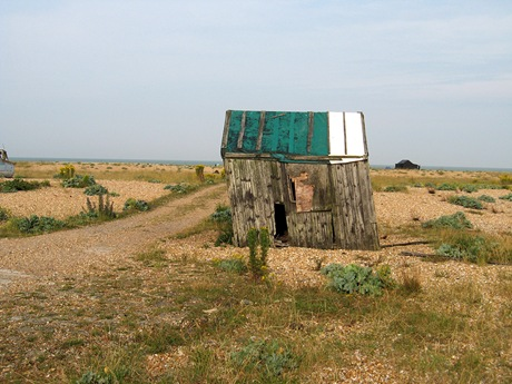 Dungeness 02