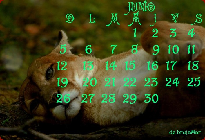Calendario5-Junio-debrujaMar