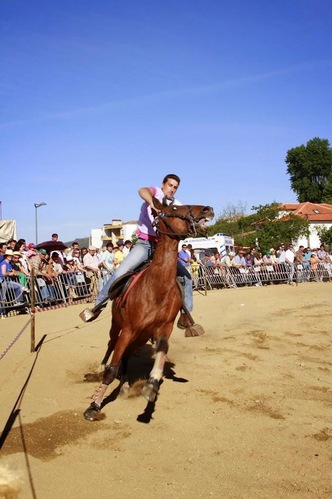 Cavalo foi o centro das atenções na Feira de Santa Cruz - 3 de Maio - Fotos