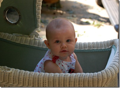 Cailyn 7 months old 3
