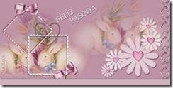 coelho-pascoa-30