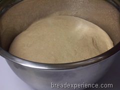 sprouted-wheat-bread 022