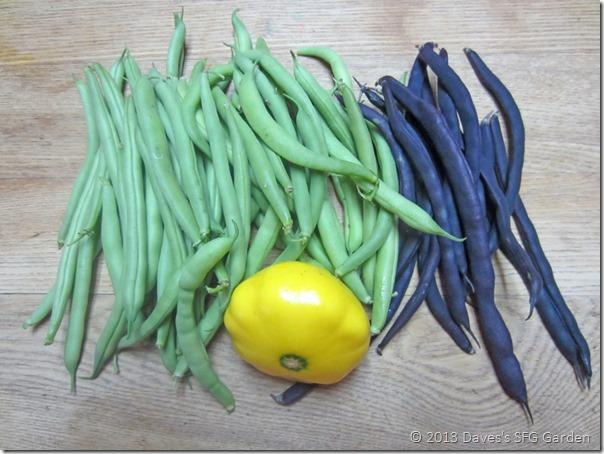 beans&squash