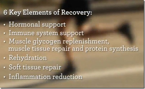 Elements Of Recovery