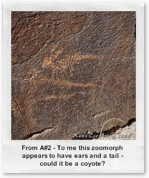 A#2-P1100051_ZM-06