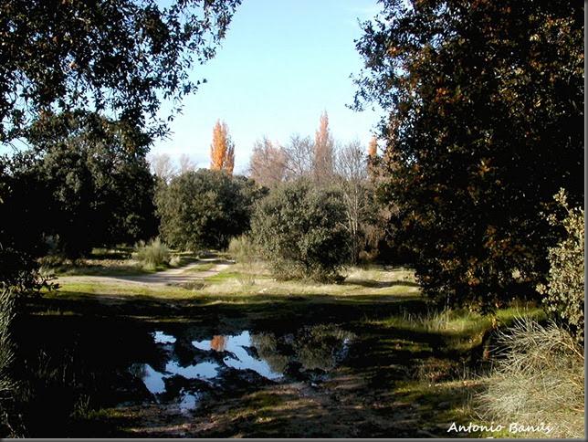 9 Camino DSCN6843X1
