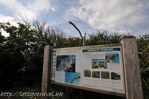 20111228okinawa123.JPG