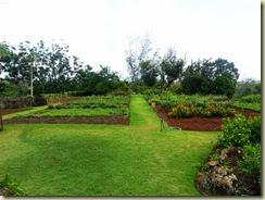20131009_flower gardens (Small)