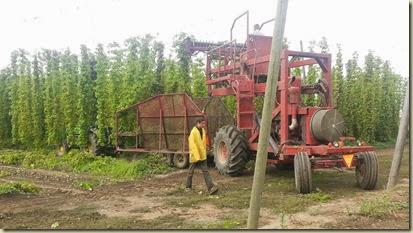 Visit Hops Farm 9-16-13_22