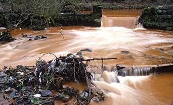 aguas ferrosas