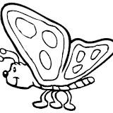 001863_A-Butterfly.jpg