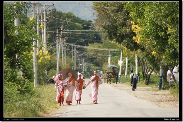 Myanmar424