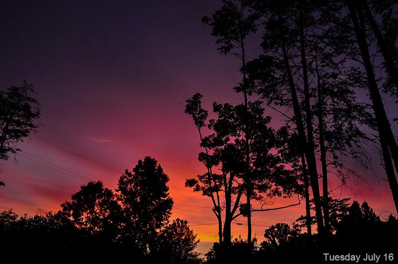 sunset-6463