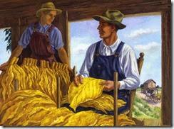 fiene_farmers-grading