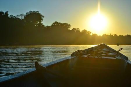 Rasarit in jungla amazoniana