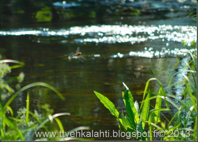 katuvalon vaihto sudenkorento super-komura 036