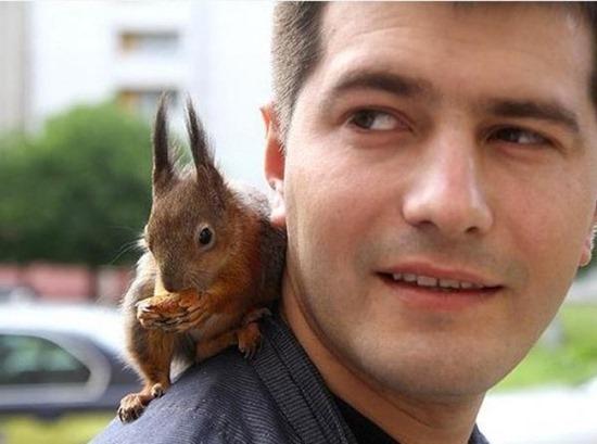 Soldado e esquilo (9)