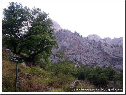 Poncebos-Canal de Trea-Jultayu 1940m-Lagos de Covadonga (Picos de Europa) 5096