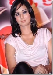 Sakshi _sexy still1