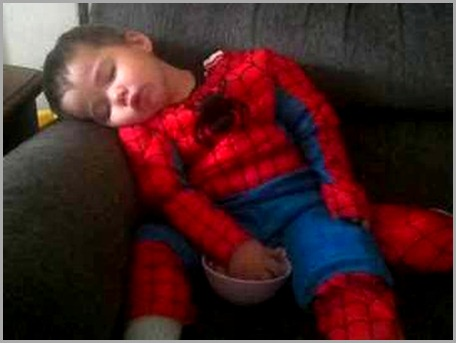 Spiderman (Rocco) after a hard day of fighting crime