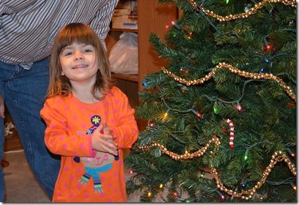 December 13 2011 Tree 011