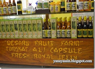 Desaru Fruits Farm018